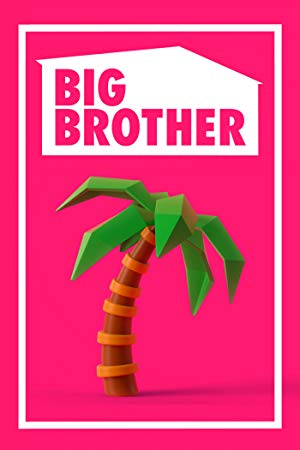 Big Brother (us): Season 21