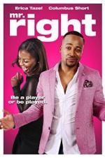Mr. Right (2015)