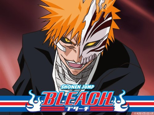Bleach: Season 8